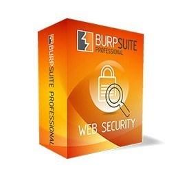 Burp Suite Professional 2020.9.1 Build 3995 Crack [Latest] Full Download